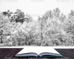Beautiful landscape of glistening frost and snow covered trees coming out of pages in magical book
